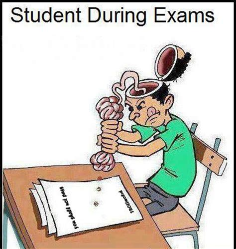 Funny things students write exam papers